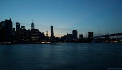 BrooklynBlues